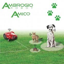 Ambrogio Amico - Robotmaaier